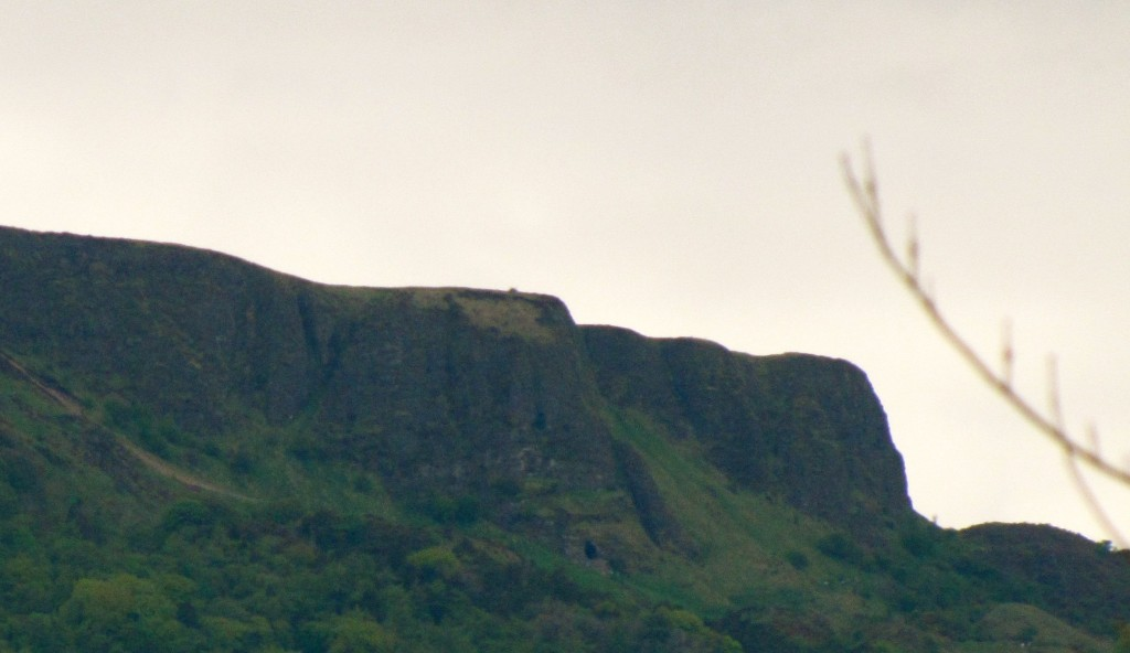 This is the sleeping giant above Belfast. Folks call him Gulliver, and say that he was the inspiration for Swift writing Gulliver's Travels. Hearing them talk, however, I'm unsure whether the giant was named Gulliver before the book was written, or was named that afterwards in honour of Swift.