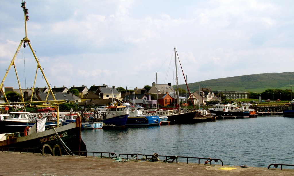 Dingle is a working harbour, mainly with fishing boats.