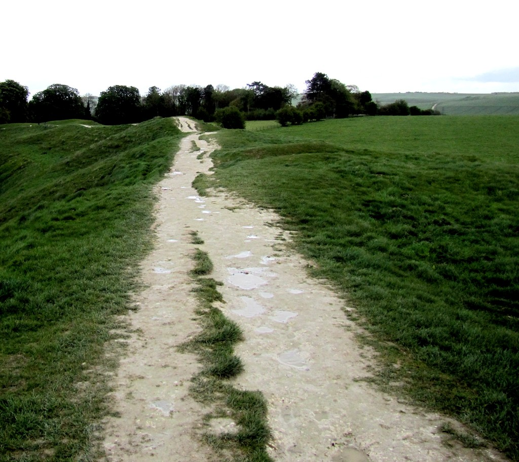 This trail runs along a ridge that has turned out to be part of an earthworks fortification. The path is clay and limestone, and got really slippery in the rain. Because of erosion repair, it only ran about a quarter of the way around the circle, and I couldn't get to the point where the Kennet Avenue led off to the Long Kennet tomb. I was sad.